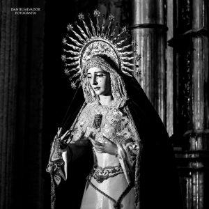 Besamanos de Nuestra Madre y Señora de la Merced